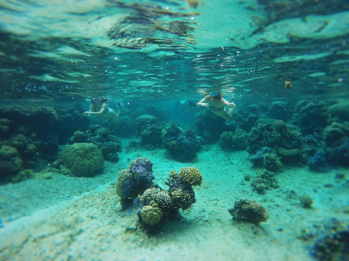 https://tahititourisme.uk/wp-content/uploads/2017/08/Bora-Bora-Reef-Discovery-2.jpg