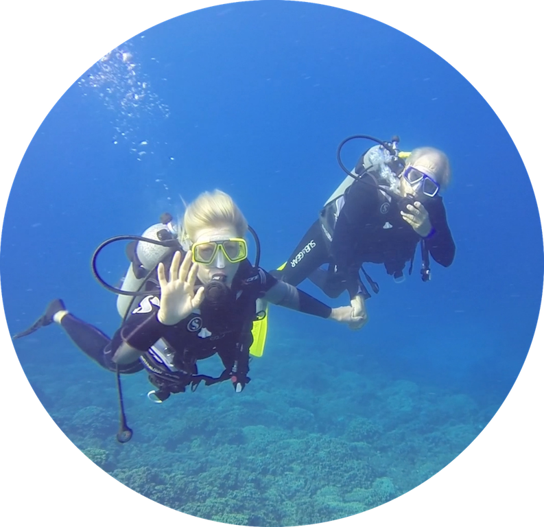 https://tahititourisme.uk/wp-content/uploads/2017/08/Divers-in-the-first-try.png