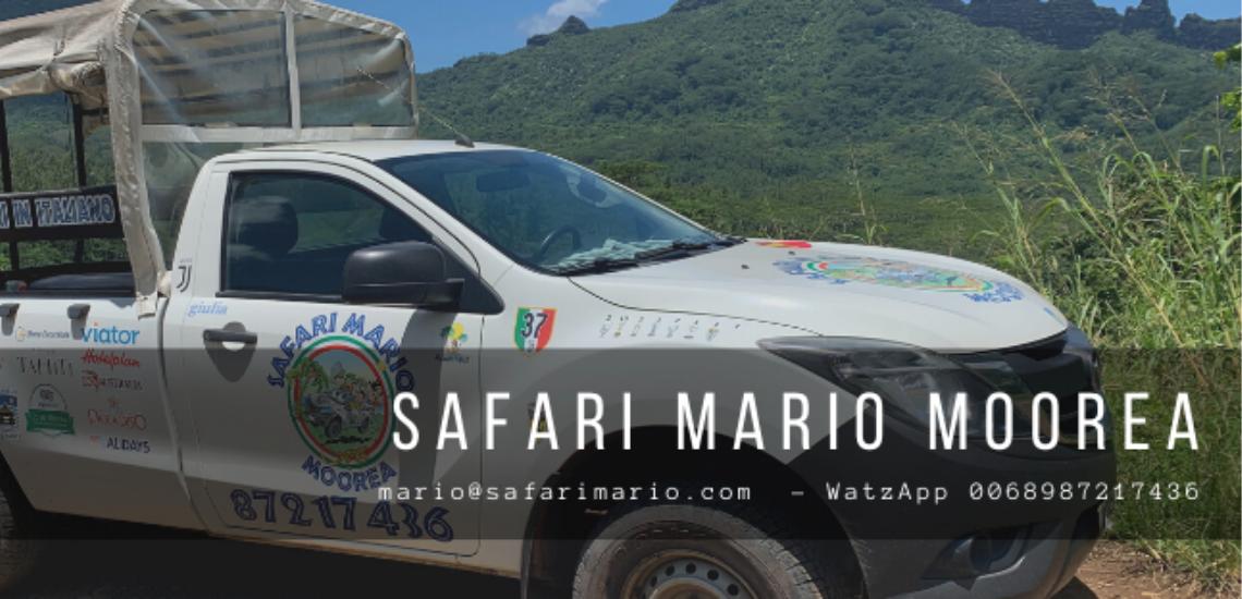 https://tahititourisme.uk/wp-content/uploads/2017/08/Safari-Mario-Moorea.png