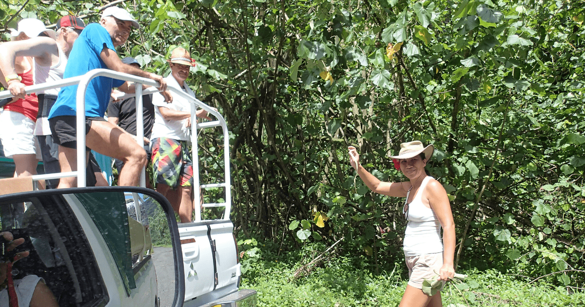 https://tahititourisme.uk/wp-content/uploads/2017/08/Tahiti-Safari-Expeditions_1140x500-min.png