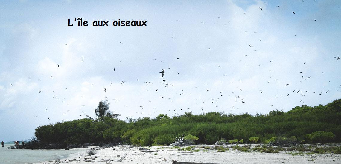 https://tahititourisme.uk/wp-content/uploads/2017/08/Tahiti-Voile-et-Lagon-photo-de-couv-2.jpg