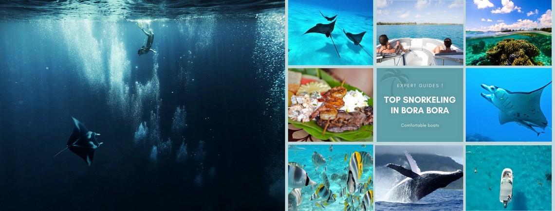https://tahititourisme.uk/wp-content/uploads/2017/08/reef-discovery-bora-bora.jpg