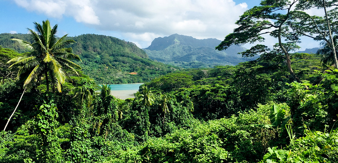 https://tahititourisme.uk/wp-content/uploads/2018/05/ACTIVITES-TERRESTRES-Green-Tours-Huahine-2.jpg