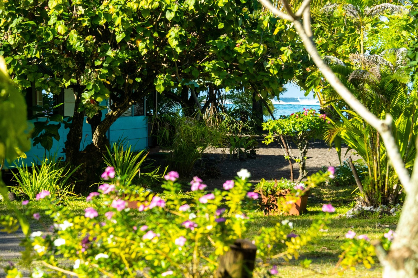 https://tahititourisme.uk/wp-content/uploads/2019/08/copie-tahiti-tourisme-800ko-1.jpg