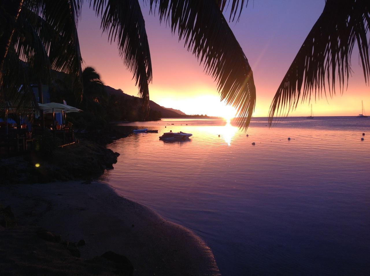 https://tahititourisme.uk/wp-content/uploads/2020/01/Moorea-Beach-Cafe.jpg
