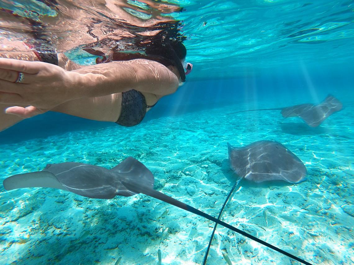https://tahititourisme.uk/wp-content/uploads/2020/11/Lagoon-Srvice-Bora-Bora-2.jpg