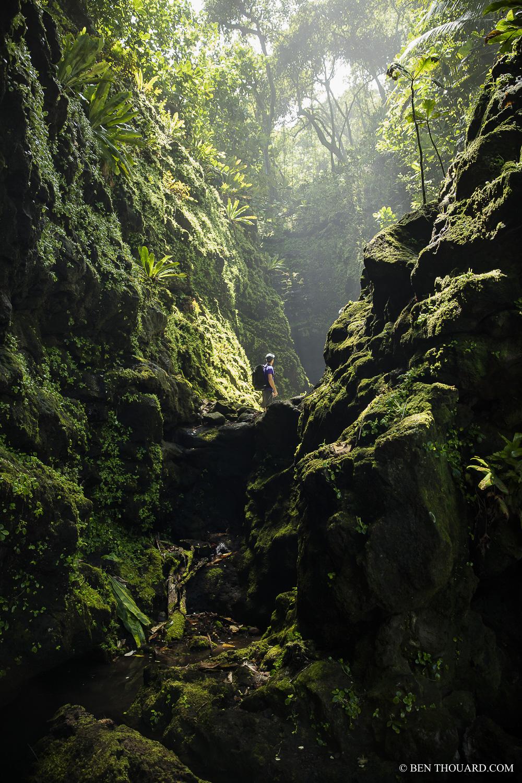 https://tahititourisme.uk/wp-content/uploads/2021/04/benthouard_tepari_hike_0242.jpg